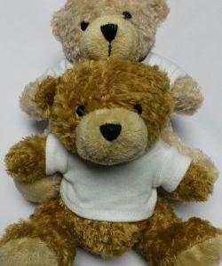 Small Teddy Bear – Plain T-Shirt