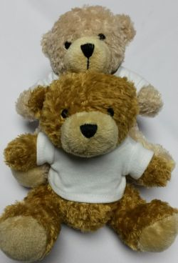 Small Teddy Bear – Plain T-Shirt